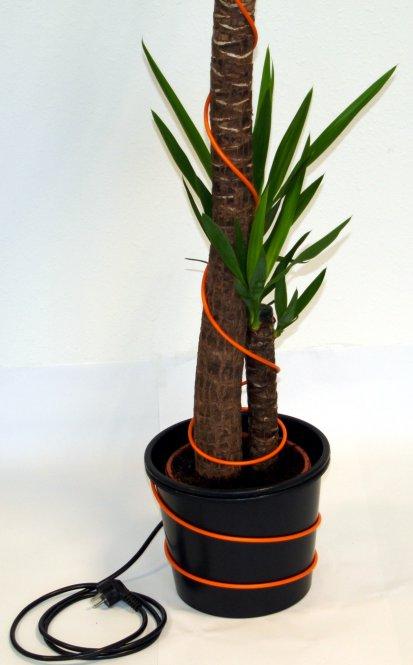 pflanzenfrostschutzkabel heizkabel f r k belpflanzen. Black Bedroom Furniture Sets. Home Design Ideas